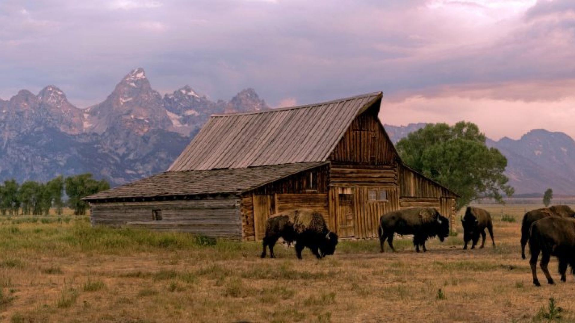 Explore Grand Teton National Park.