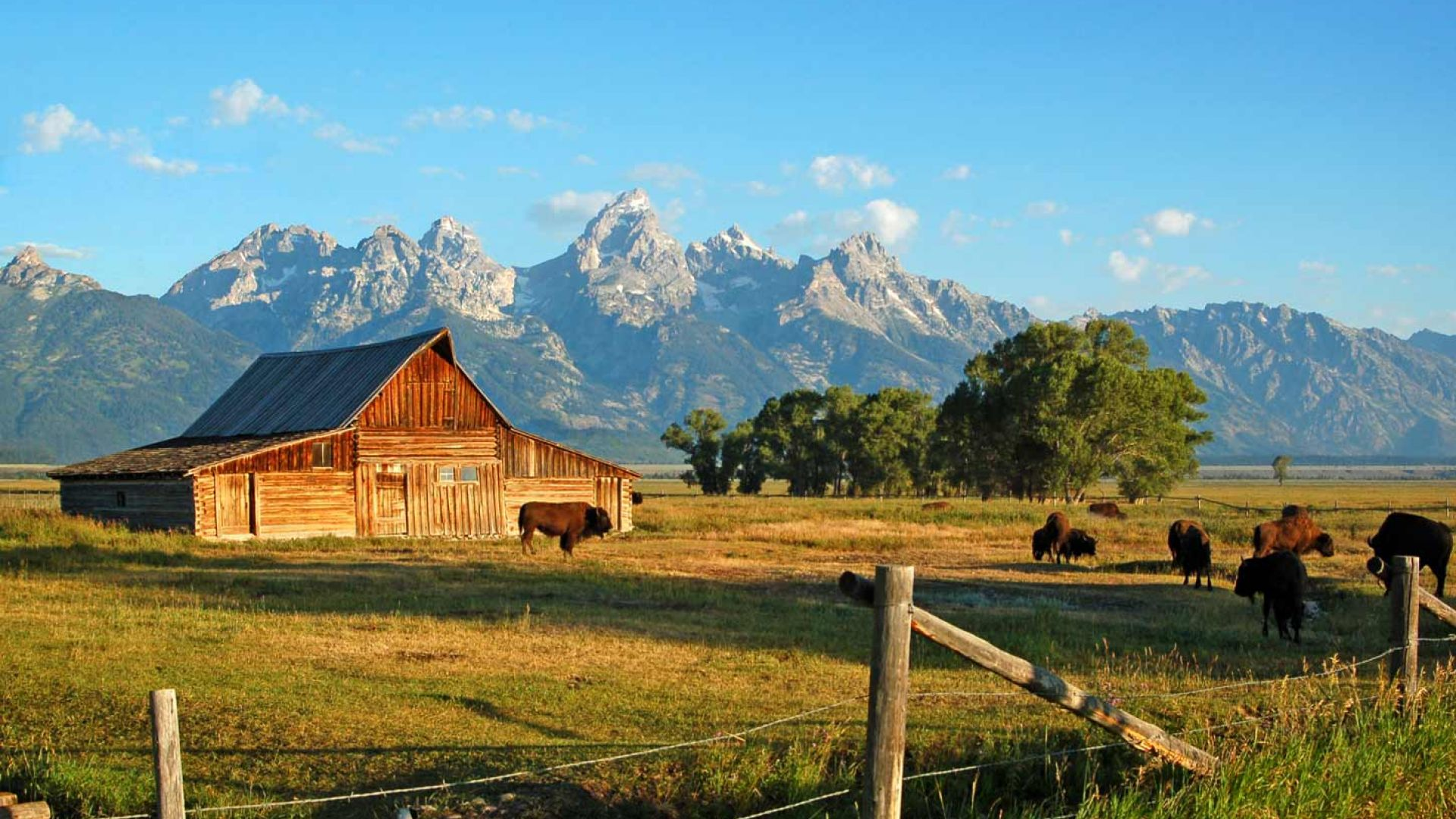 Find the top things to do in Jackson Hole.