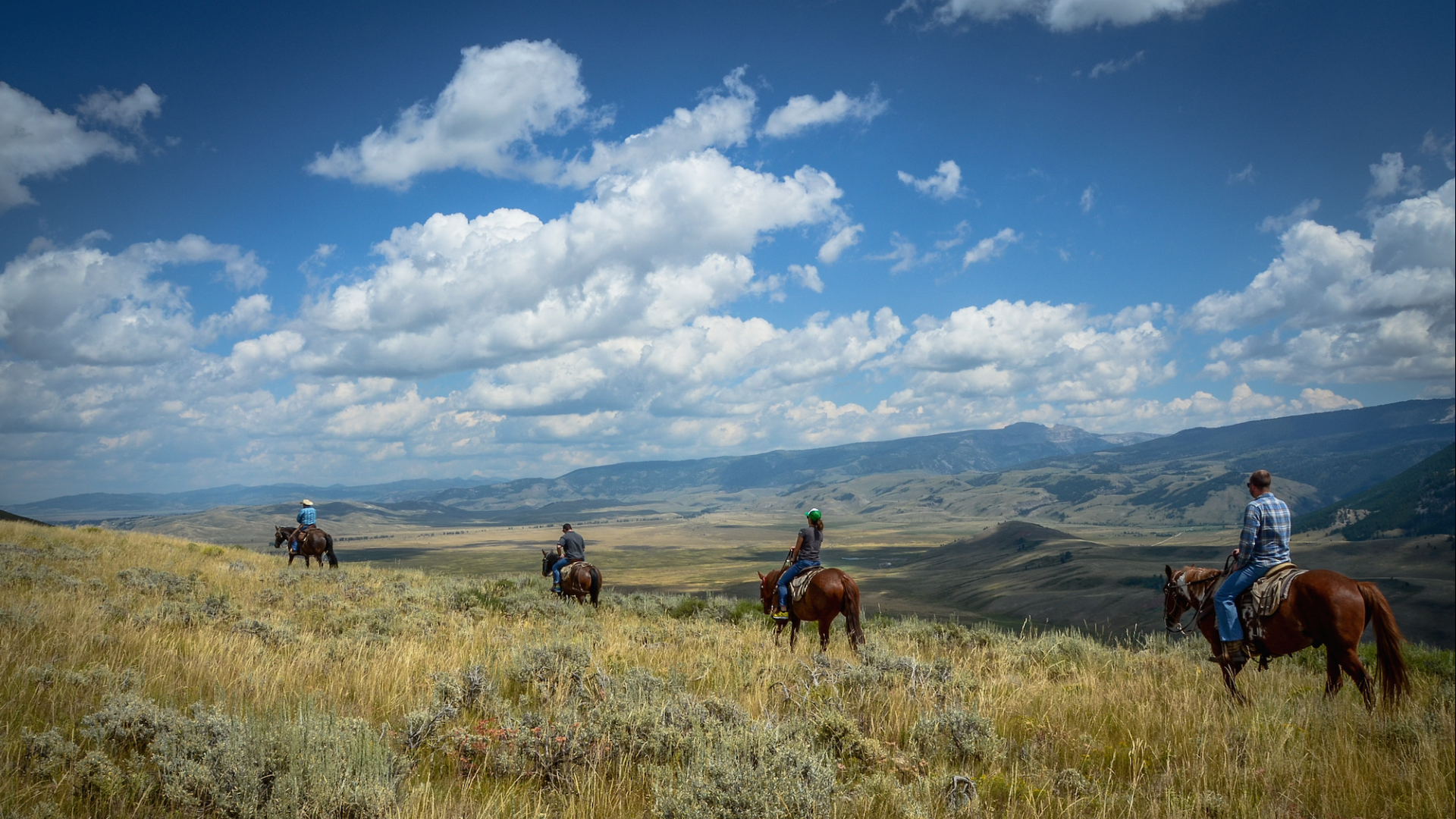 Horseback riding guided tours in jackson hole grand for What to do in jackson wy