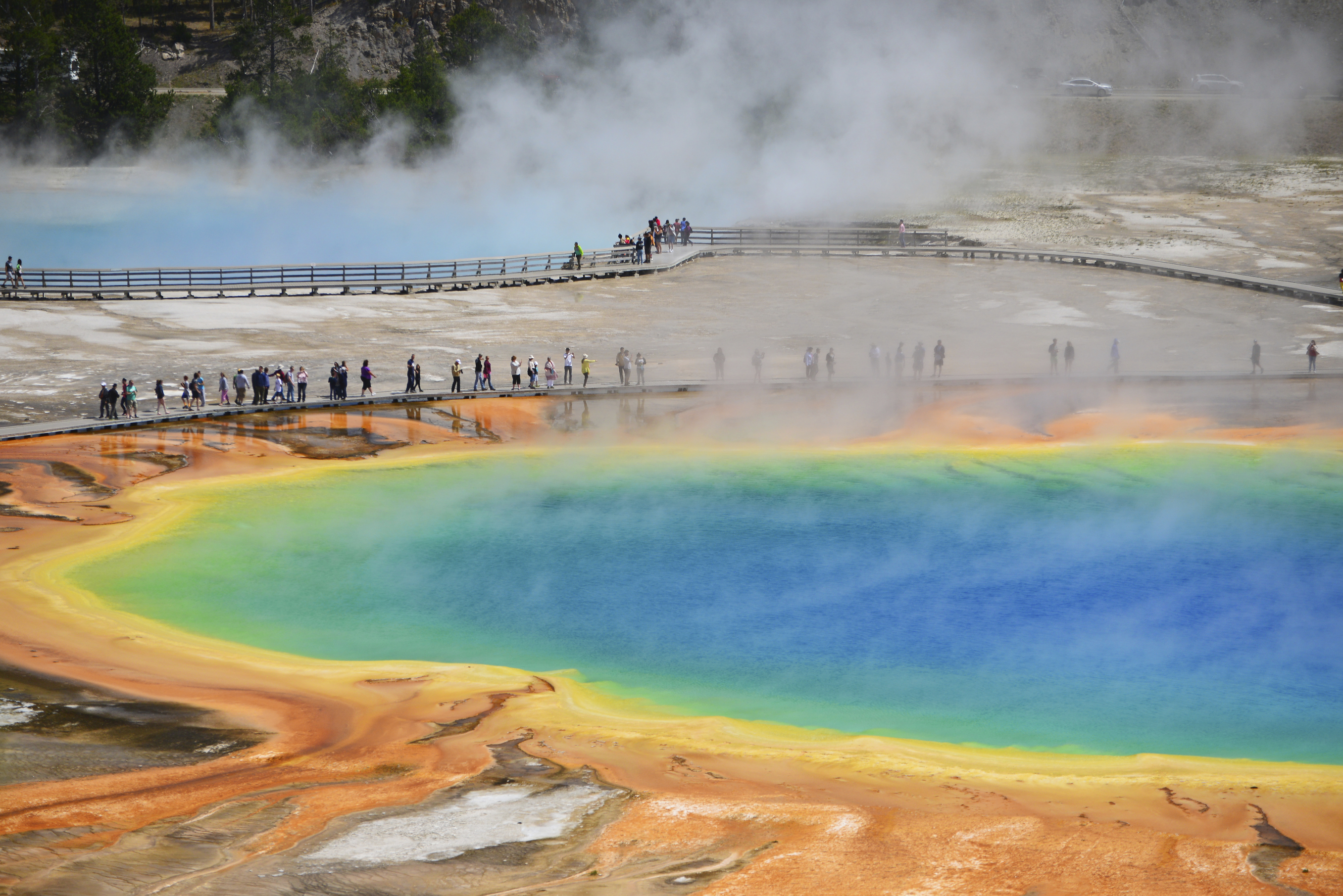 Yellowstone National Park Facts  Jackson Hole Central
