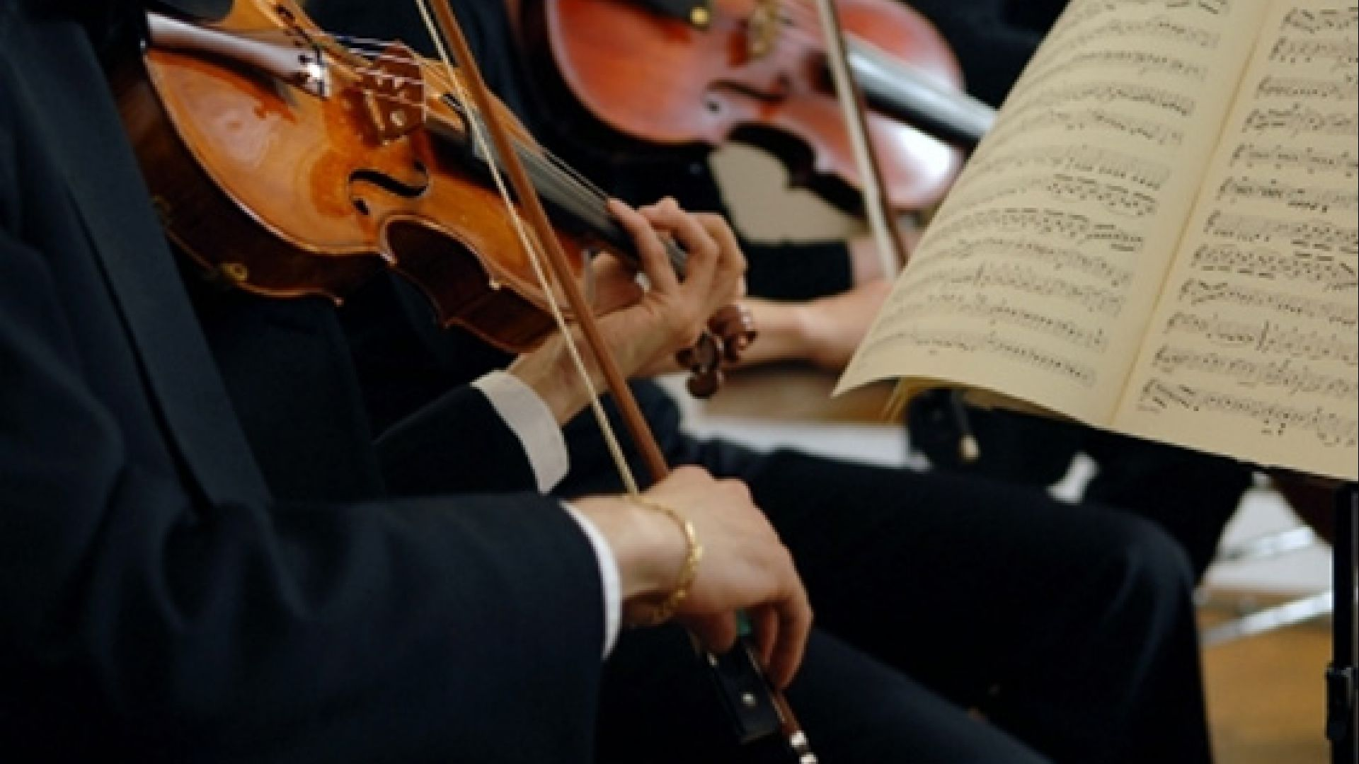 Experience year-round symphony performances.