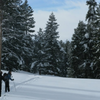 Hole Hiking Experience - Cross Country Skiing