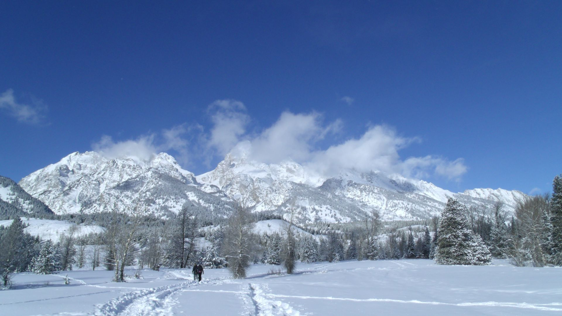 December Nature News From Hole Hiking Experience Jackson Hole Wy Central Reservations Blog