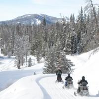 Togwotee Snowmobile Adventures