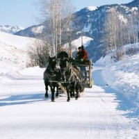 Mill Iron Ranch Dinner Sleigh Rides