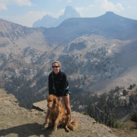 5 Dog Friendly Hikes Around Jackson Hole