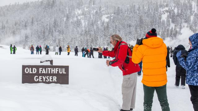 Winter Wildlife & National Parks Package