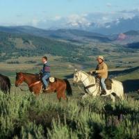 Goosewing Ranch Horseback Rides