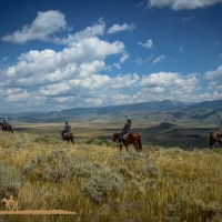 Spring Creek Ranch Horseback Rides