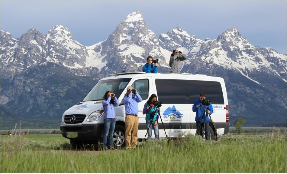 Wildlife expeditions summer 1
