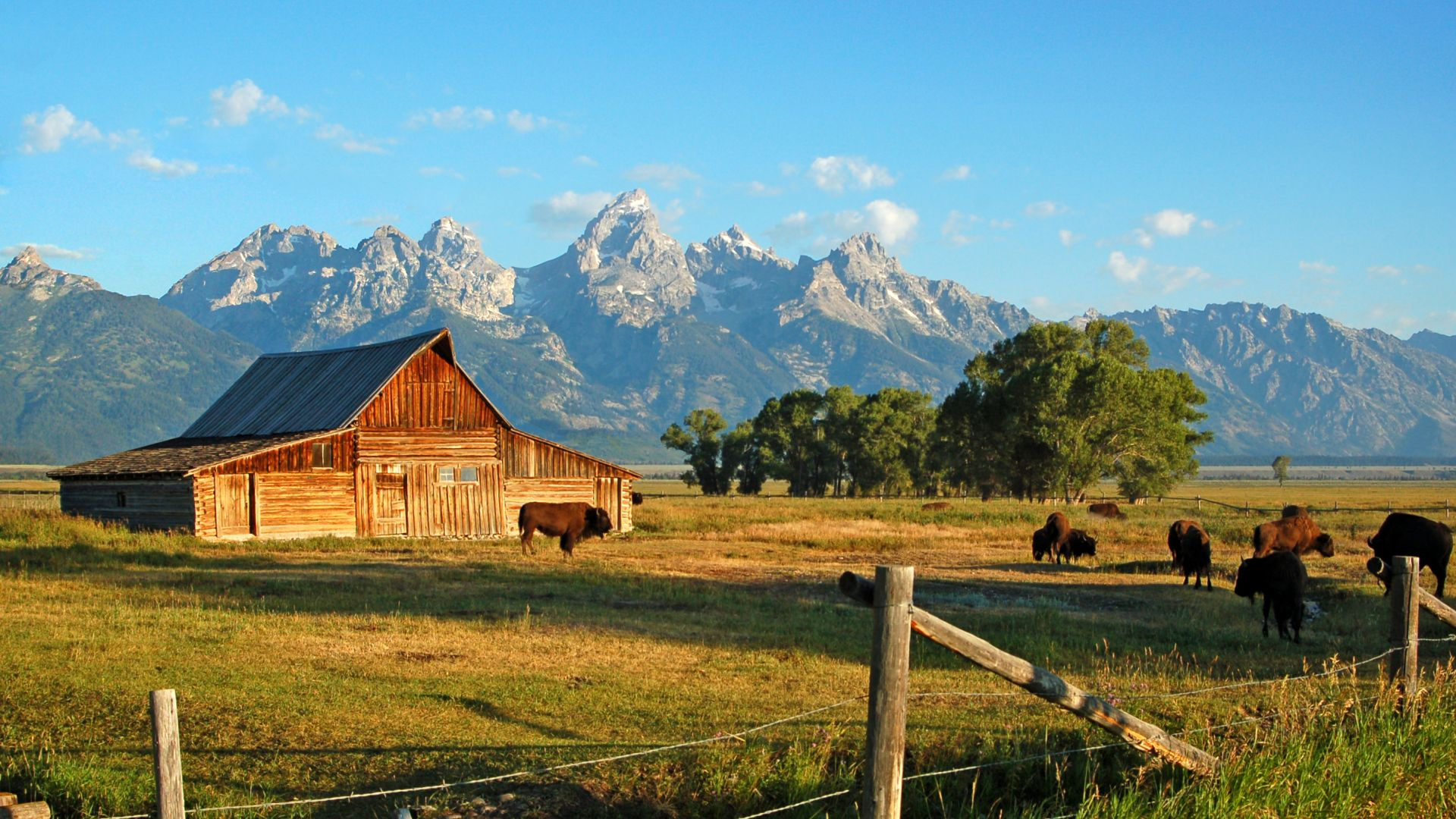 Jackson hole giddy up giveaway jackson hole wy central for Jackson hole summer vacation