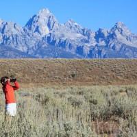 Jh wildlife safaris Grand Teton Views Jackson Hole