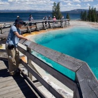 Jh wildlife safaris wildlife West Thumb Yellowstone i