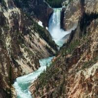 Jh wildlife safaris wildlife Grand Canyon Yellowstone