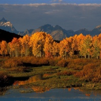 Fall in Jackson Hole: 9 Things to Do in Grand Teton National Park
