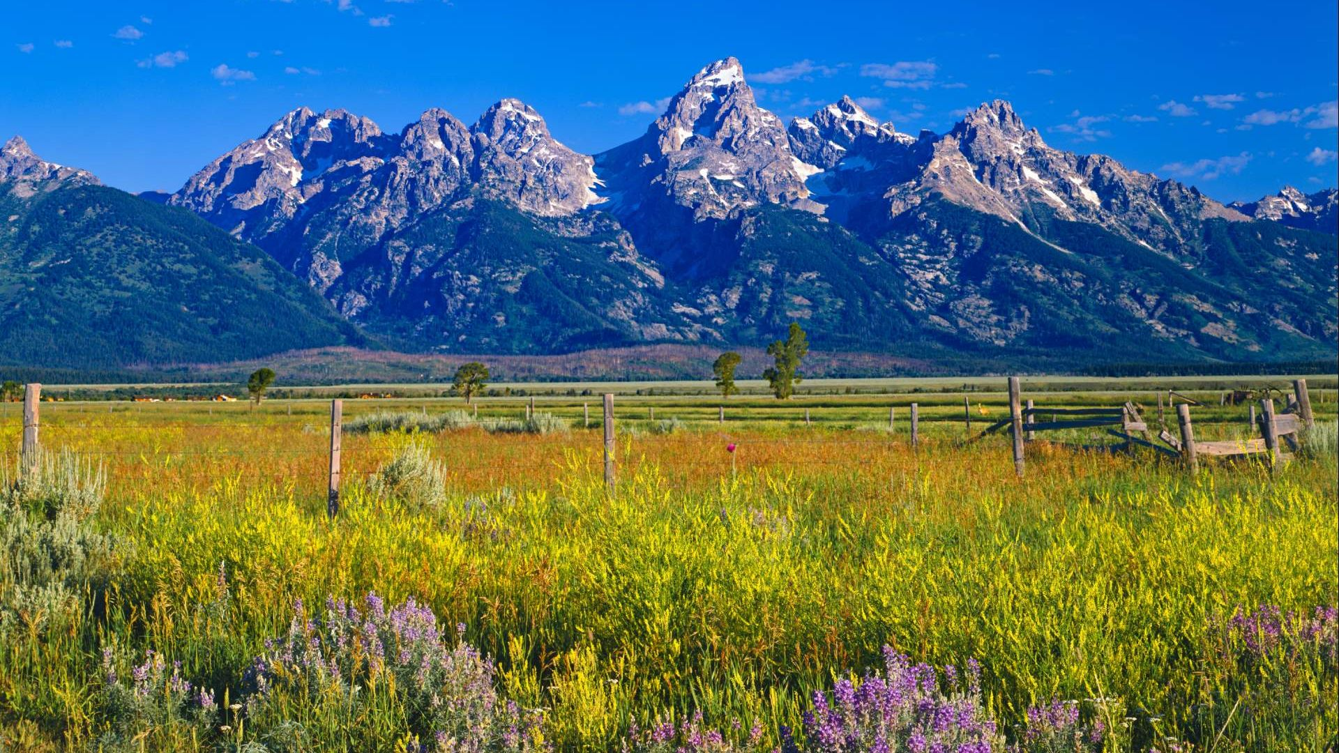 Visit the most iconic mountain town in the West: Jackson Hole, WY, where there's something for everyone.