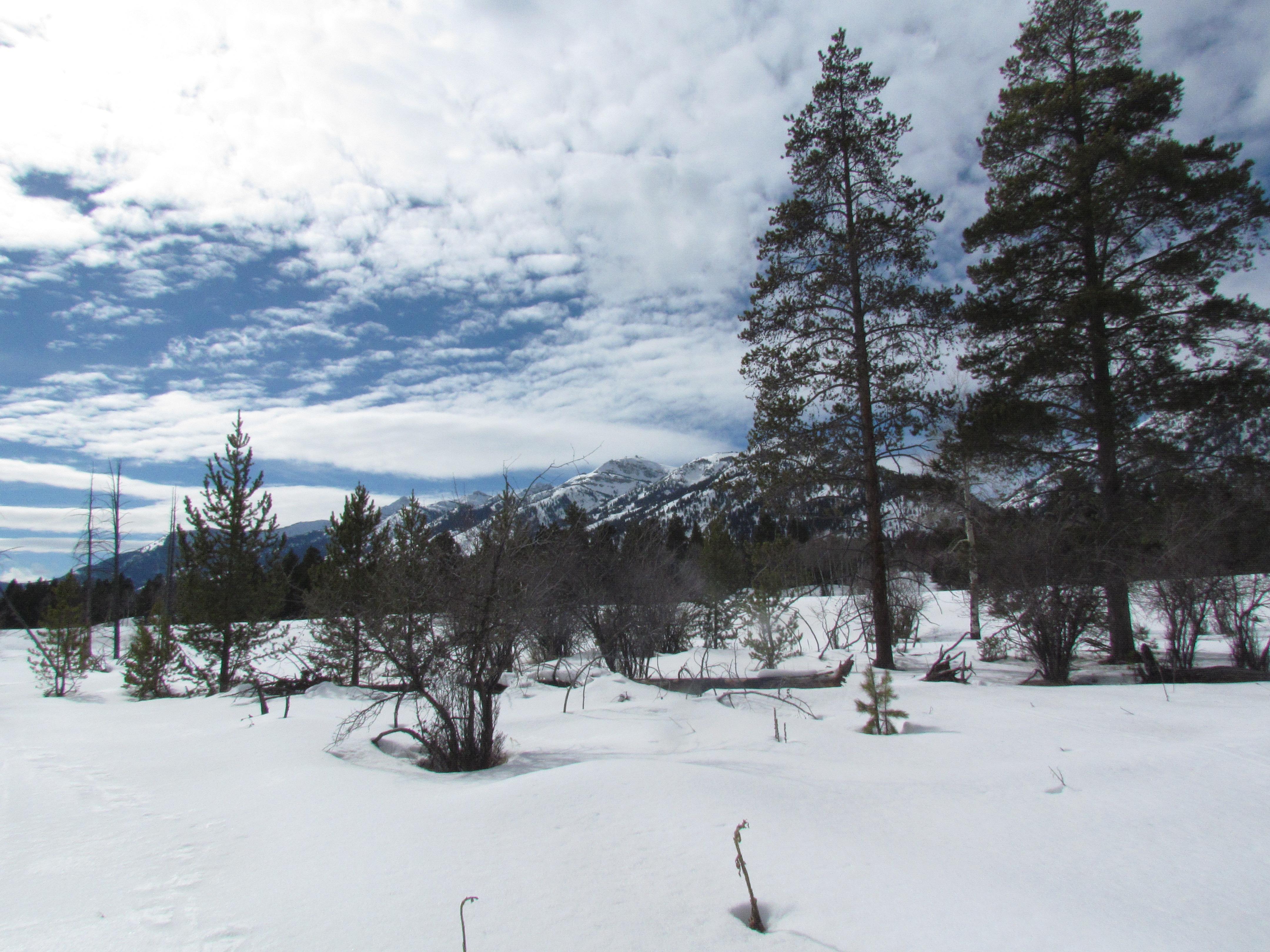 snowshoe grand teton