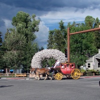Does Jackson Hole, Wyoming Have Lyft and Uber?
