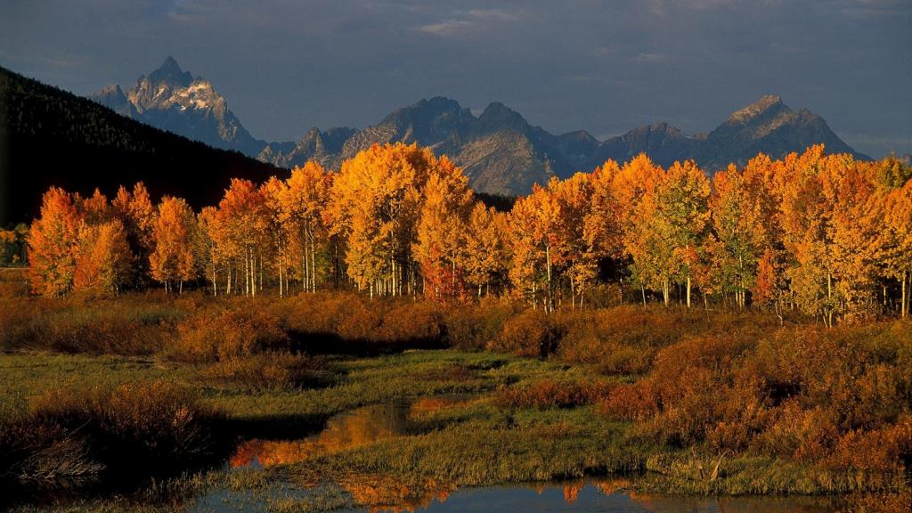 Fall National Parks Package in Jackson Hole