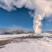 5 Reasons to Visit Yellowstone This Winter