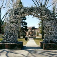 A Must-See: The Elk Antler Arches on Town Square