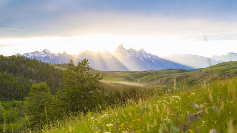 Top 6 Summer Activities in Jackson Hole, WY