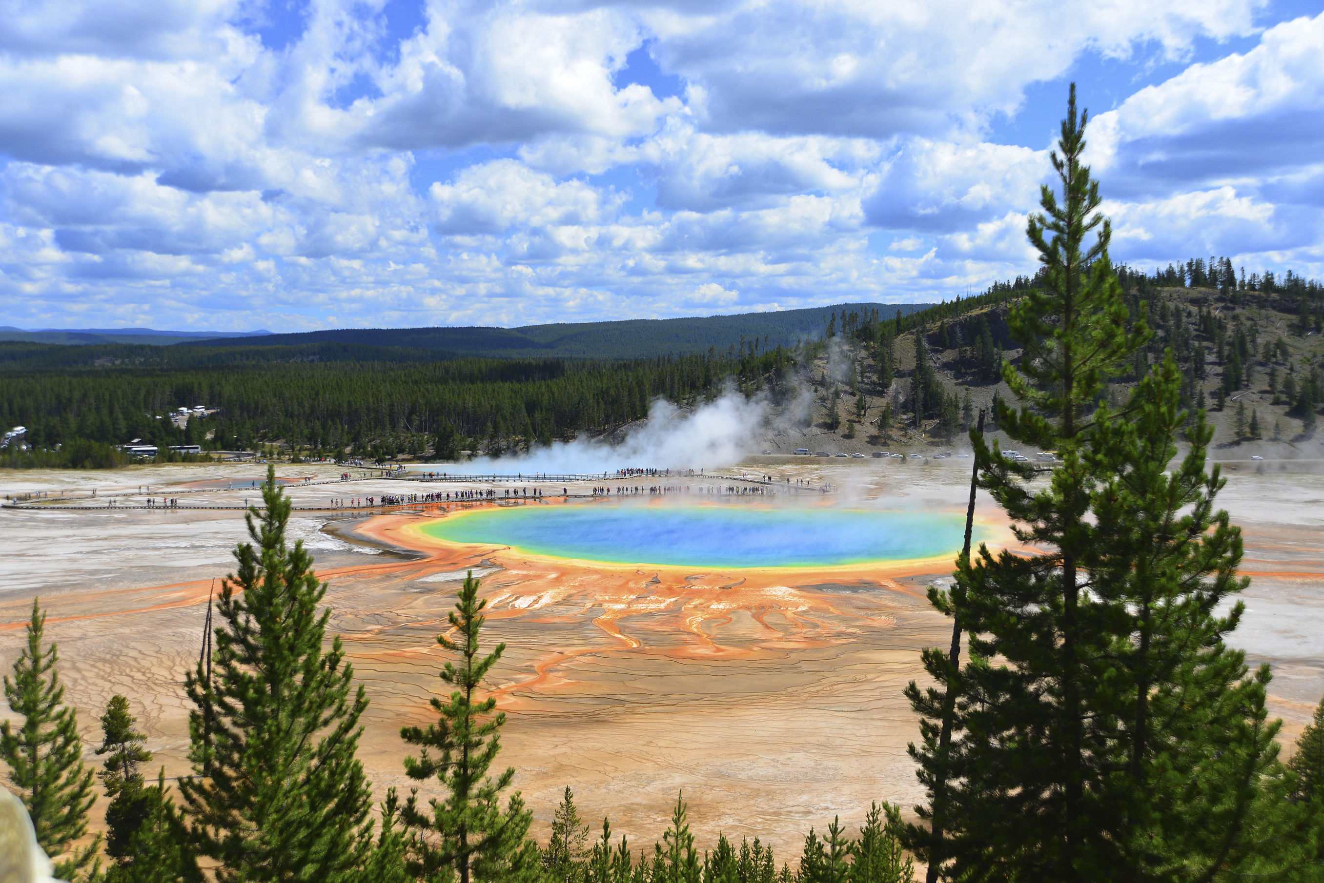 yellowstone summer
