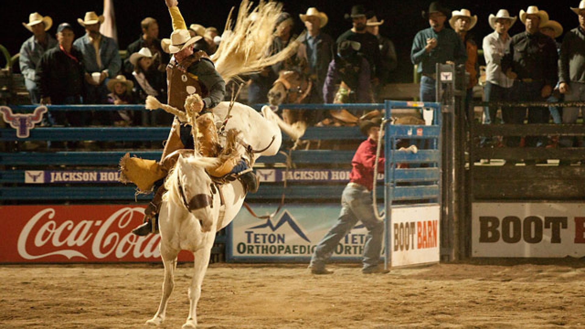 Catch the action twice a week at the Jackson Hole Rodeo in the summer!